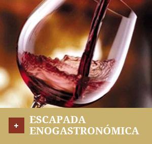 ofertas-enogastronomica